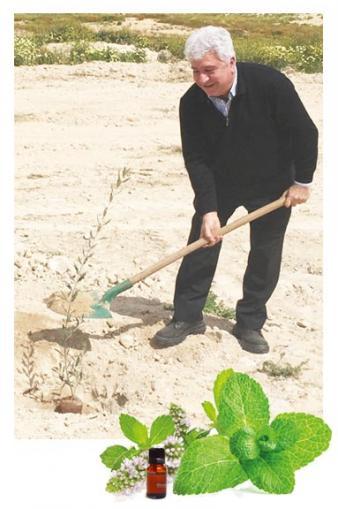 MANGHEBATI, producteur d'extraits de plantes